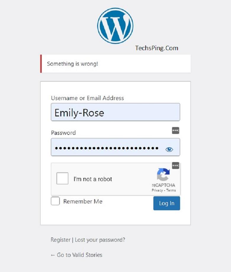 Wp-admin/WordPress log in Issue